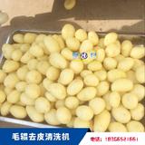 土豆清洗去皮機