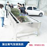 莖葉類植物氣泡清洗設備